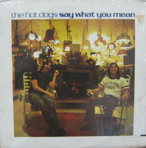 THE HOT DOGS - Say What You Mean